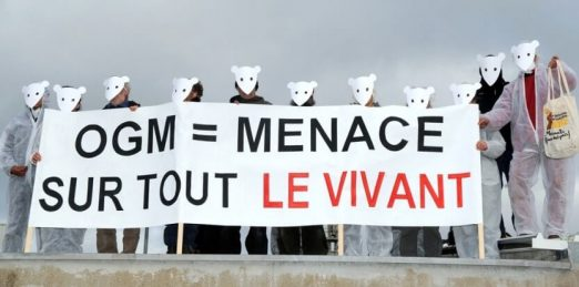 anti ogm sur -un site de monsanto